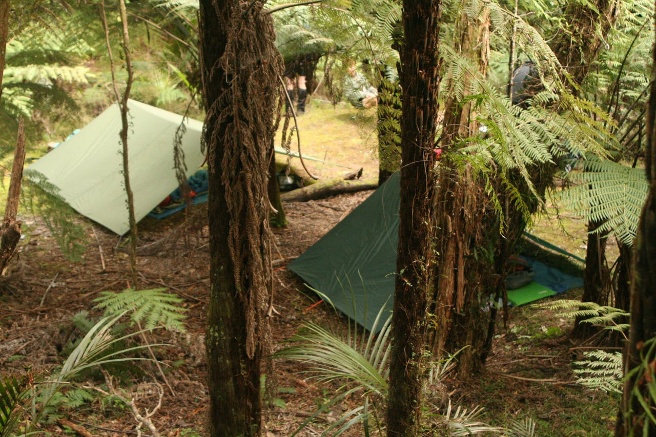 Sleeping under flies in the Hunua Ranges was a first for the bushcraft students. Photo: Josh Gale