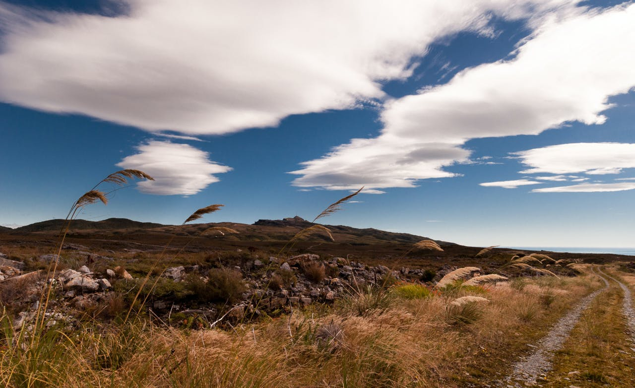 The Denniston Plateau could soon be the site of intensive mining operation/ Photo: Fraser Crichton