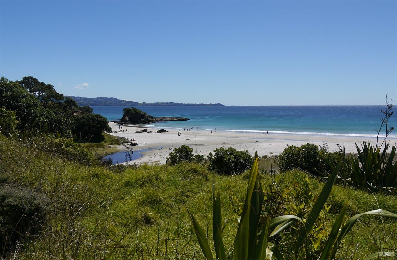 Tawharanui Regional Park, Auckland. Photo: Alistair Hall
