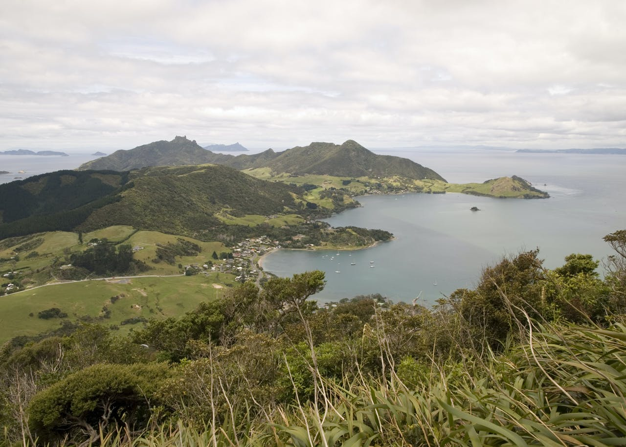 View to Bream Head from Manaia (420m)