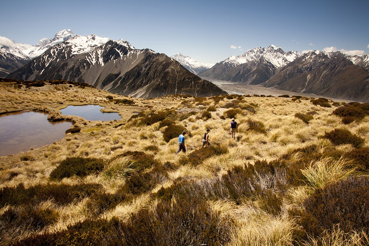 Mt Cook and Tasman Valley from above Red Tarns. Photo: Nick Groves