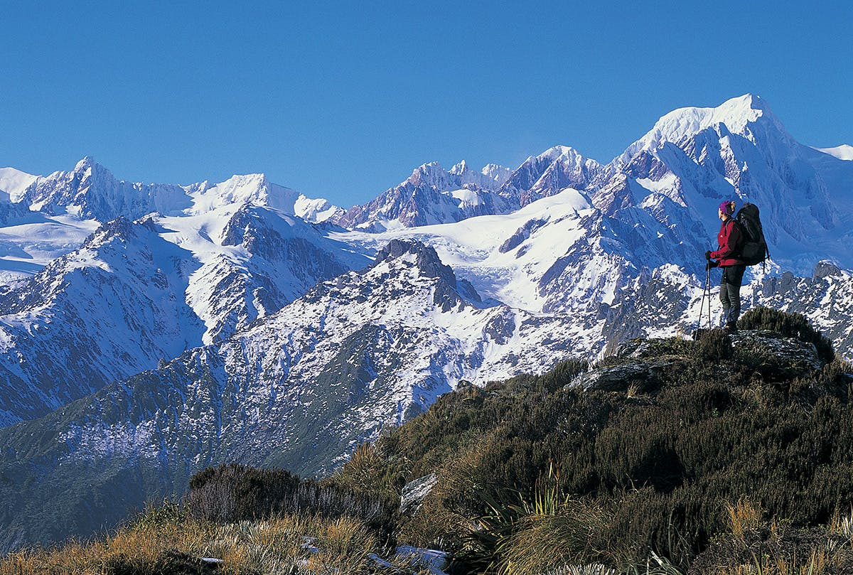 On Mt Fox with Mt Tasman and upper Fox Glacier above. Photo: Nick Groves
