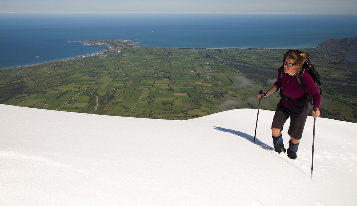 On Mount Fyffe with Kaikoura Peninsula below. Photo: Nick Groves