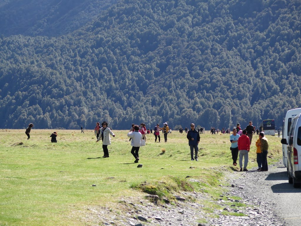 Visitors stretch their legs in the Eglinton Valley off the Milford Highway CREDIT Robin McNeill