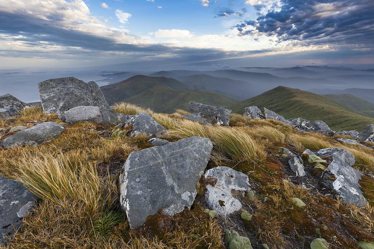 Great views towards Rakiura's interior from Mt Anglem. Photo: Mark Watson