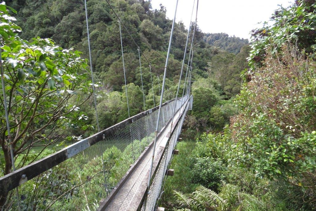 The Hopuruahine Bridge prior to the accident. Photo: DOC
