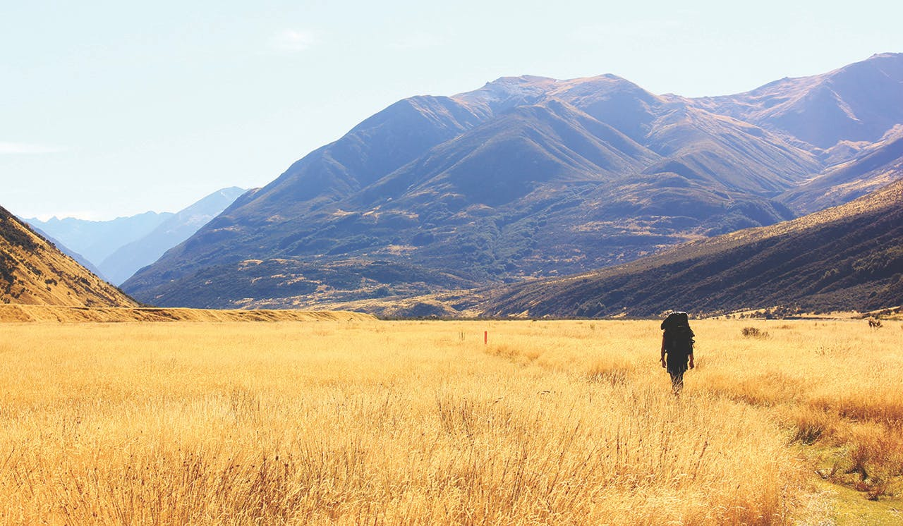 The timeless landscape of the Canterbury high country. Photo: Supplied