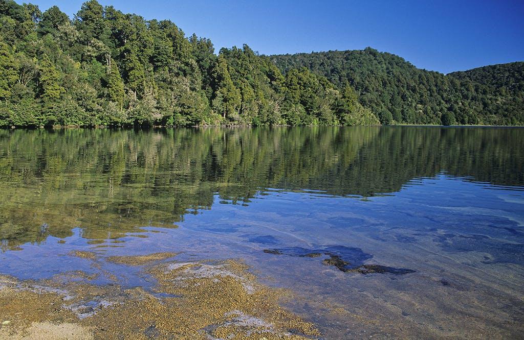 A walk around Lake Rotopounamu takes about 2hr. Photo: Shaun Barnett/Black Robin Photography
