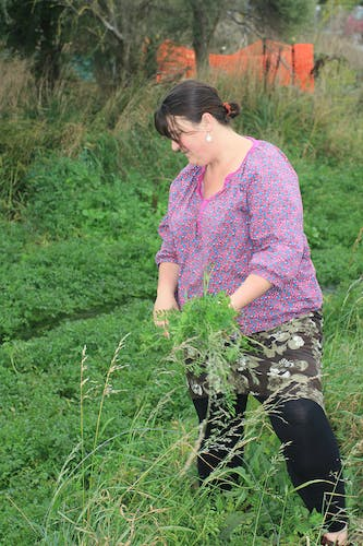 Melany Wright gathering riverside herbs. Photo: Peter Langlands