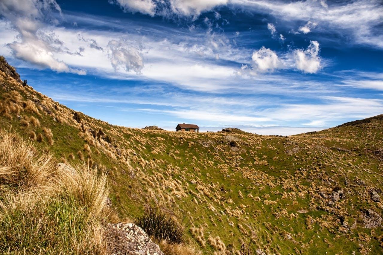 Packhorse Hut_Celia Mendes