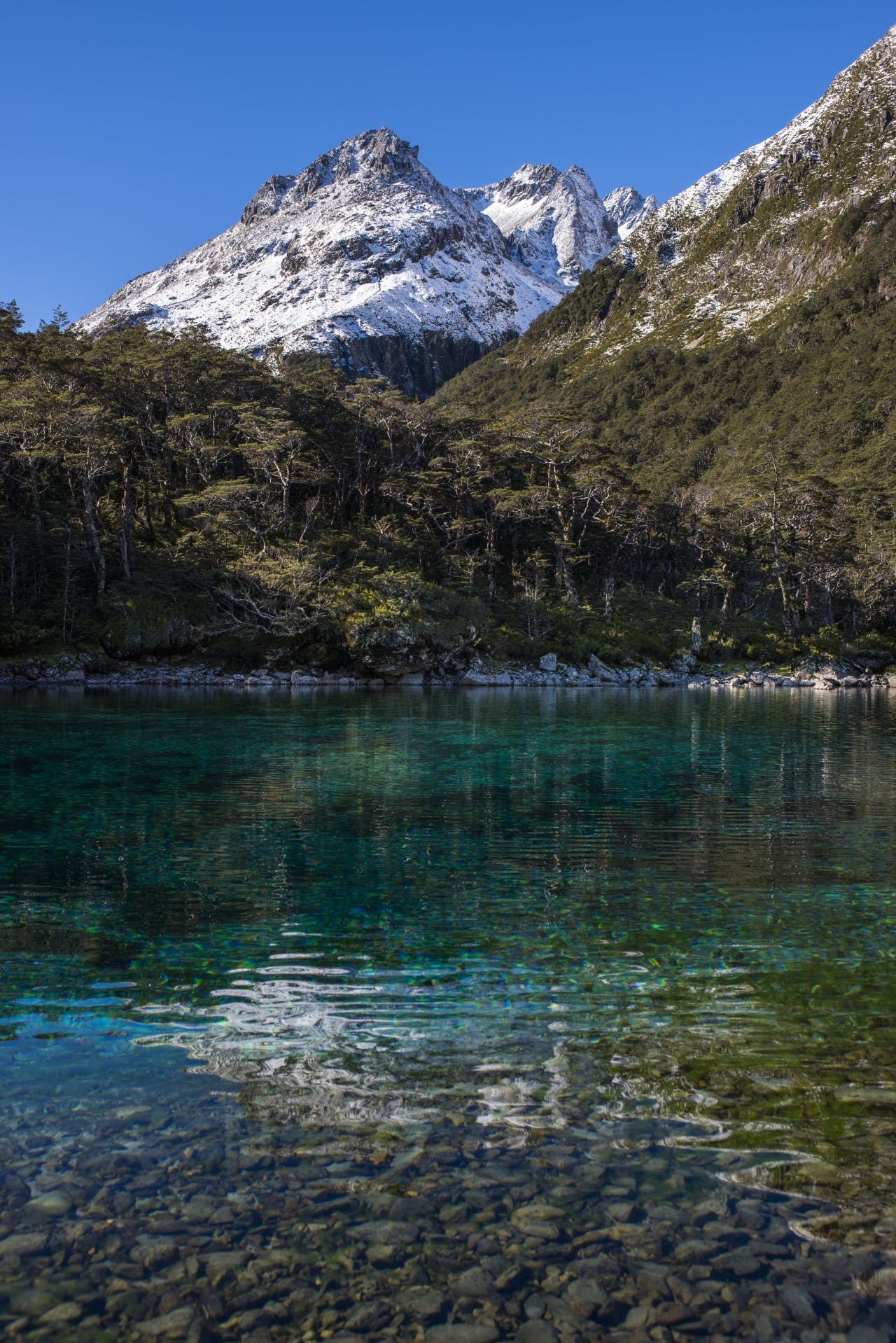 The crystal clear Blue Lake with Franklin Range beyond