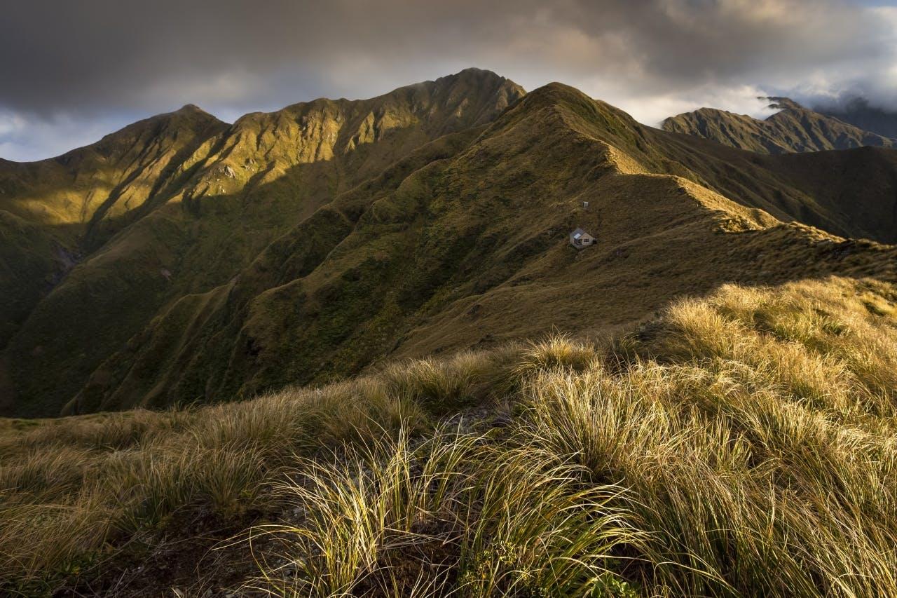 Tarn Ridge Hut_Mark Watson