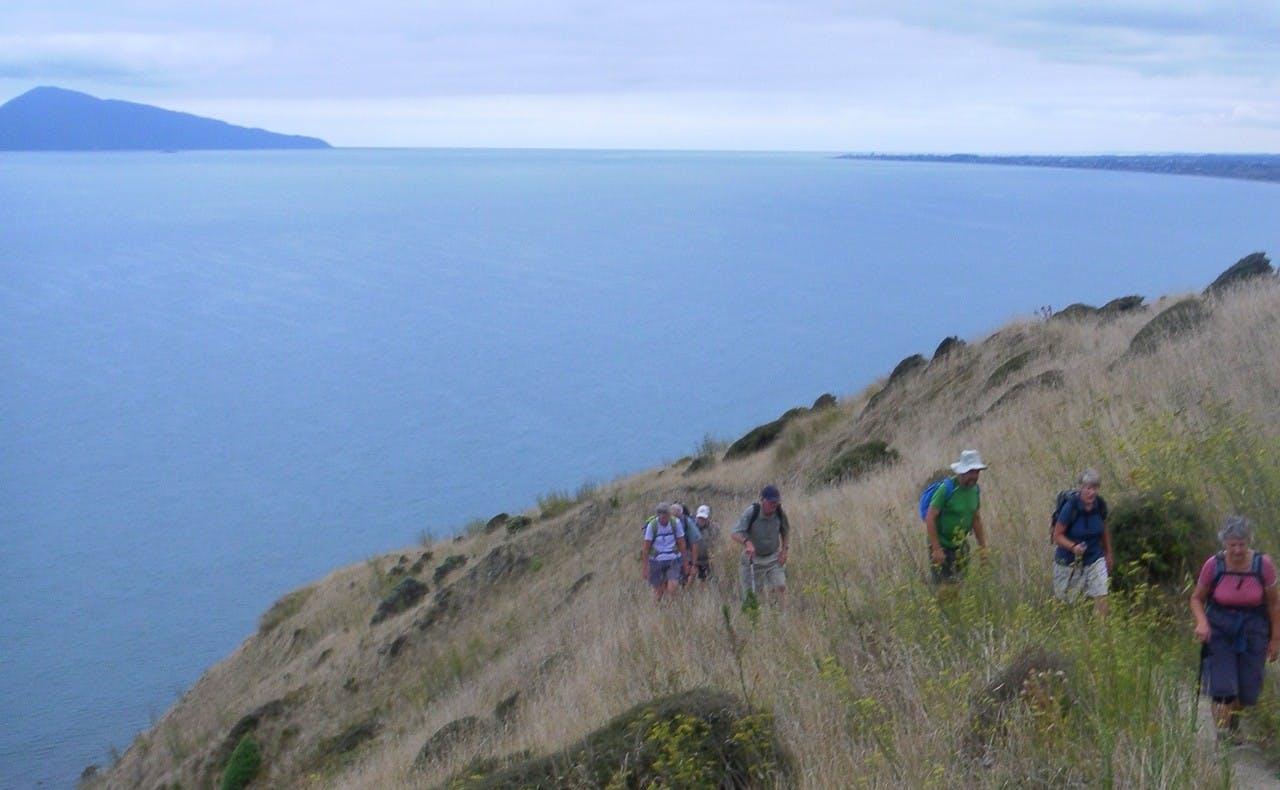 Walkers Trying out a new part of the Te Araroa Tail between Paekakariki and Pukerua bay.