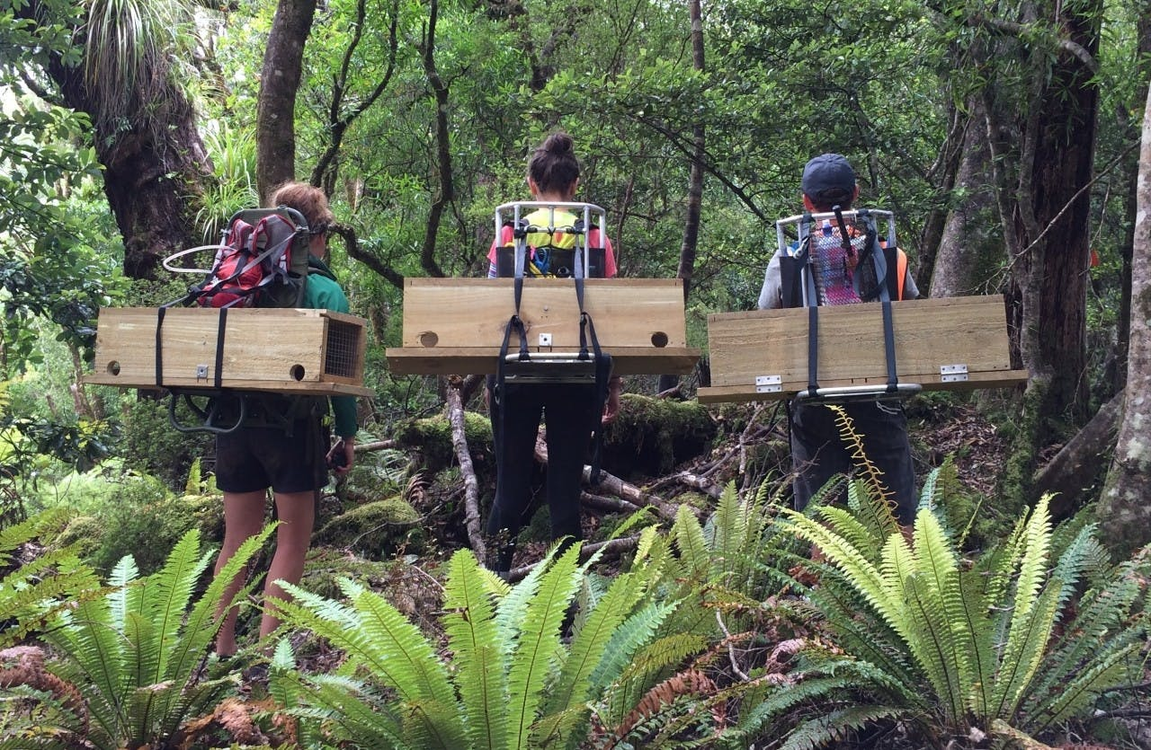 Volunteers pose with traps before setting off the place and set them