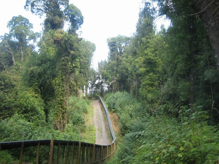 The predator proof fence at Maungatautari is the longest in the country. Photo: Floyd Wild