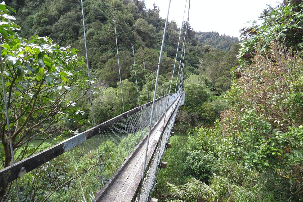 The offending bridge over the Hopuruahine Stream. Photo: DOC