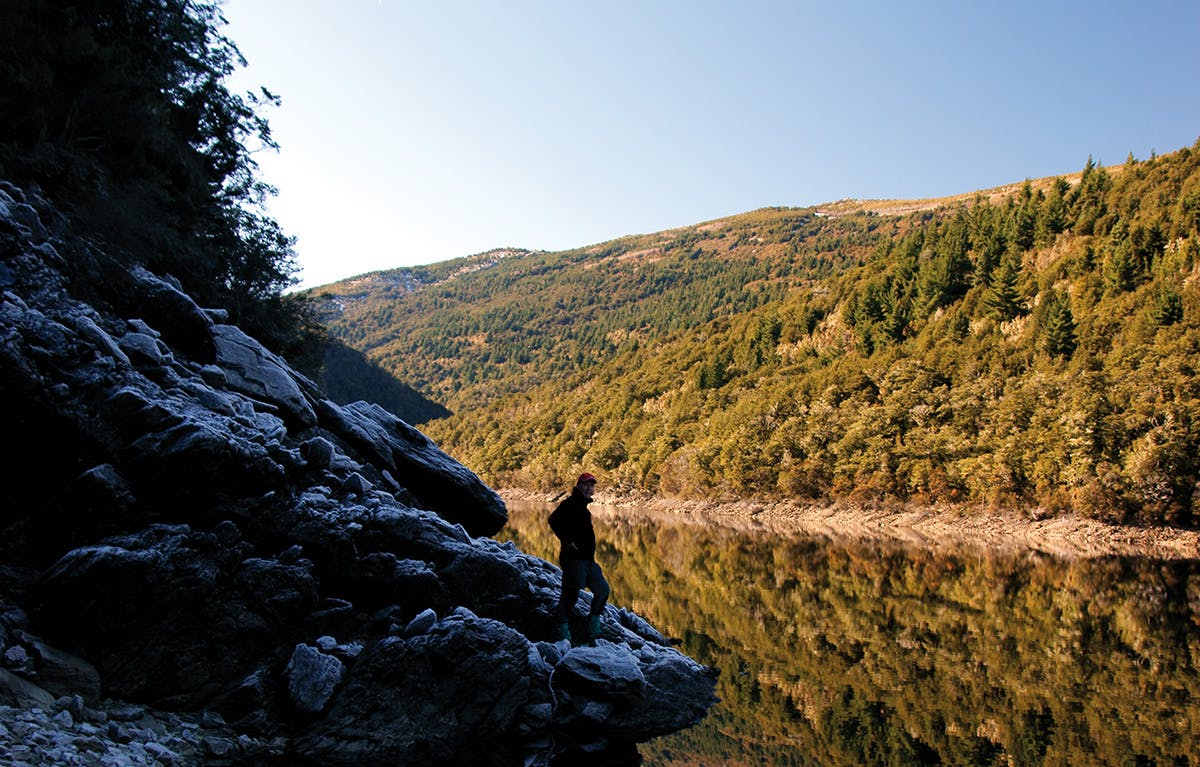 The author explores his local lake in Mt Richmond Forest. Photo: Ray Salisbury