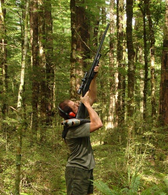 Joris Tinnemans takes aim at another branch. Photo: DOC