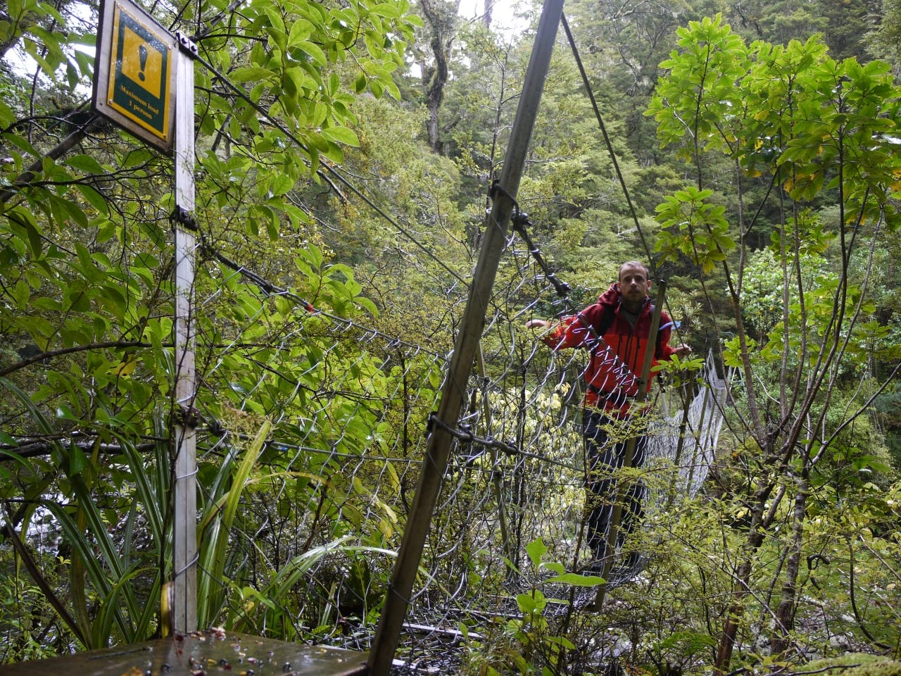 There are four Forest Service swingbridges on the Catlins River-Wisp Loop