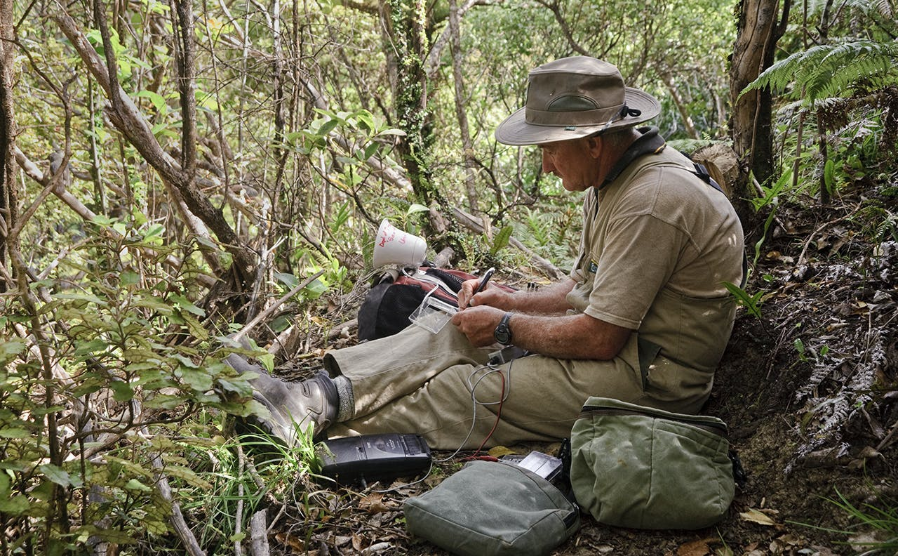 The latest restructure is said to target 'paper-pushers' and 'bureaucrats', but no-one within DOC Wilderness spoke to said that is an adequate description of programme managers. Photo: John Bown