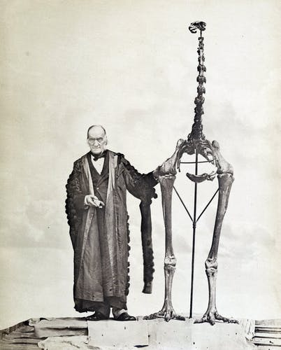 Sir Richard Owen with a Giant Moa skeleton in 1879. Photo: John van Voorst