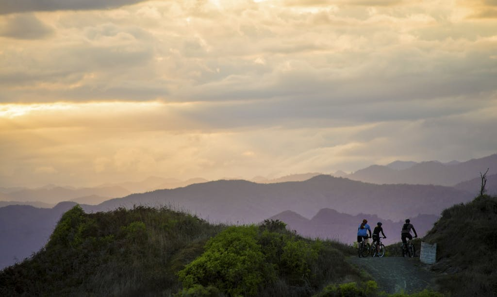 Cyclists enjoy a late evening ride through the dunes on the Motu Trails, on the North Island's east coast Photo: MOTU TRAILS CHARITABLE TRUST