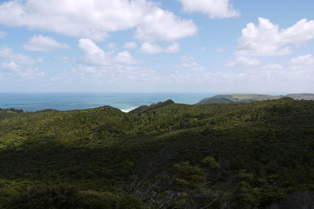 View from Kuataika Trig