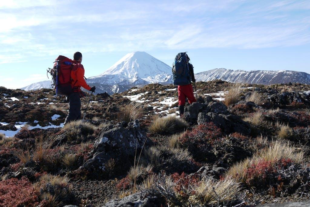 Ngauruhoe lured us on from the bottom of Waihohonu Ridge.