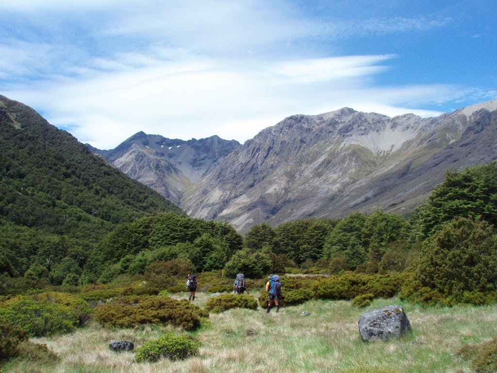 Passing through tussock fields near Paske Hut. Photo supplied