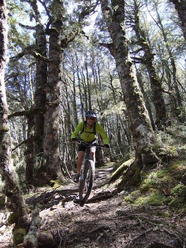 Guy-Wyn Williams: Trail Fund NZ's Guy Wynn-Williams supports the development dual-use trails