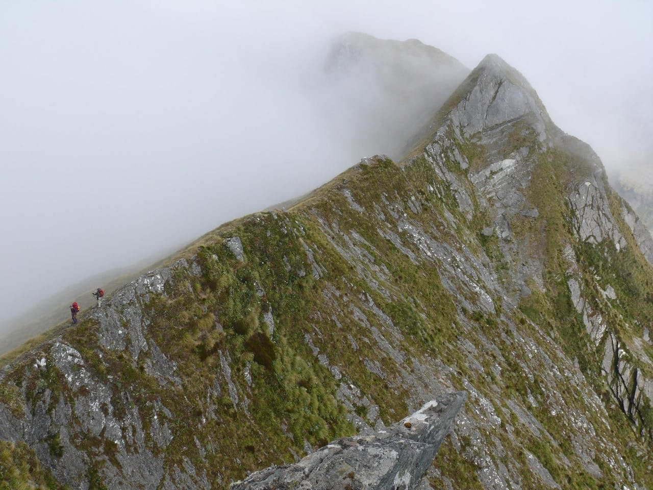 Trampers traverse the scary Selborne Range. Photo: Geoff Spearpoint
