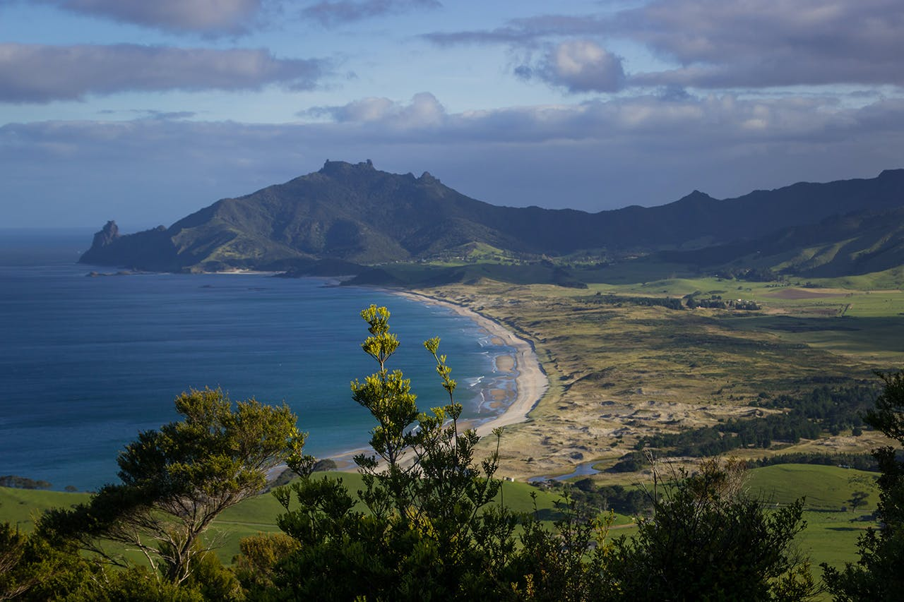 View from Kauri Mountain to Ocean Beach and Bream Head. Photo: Evelyne de Boeck