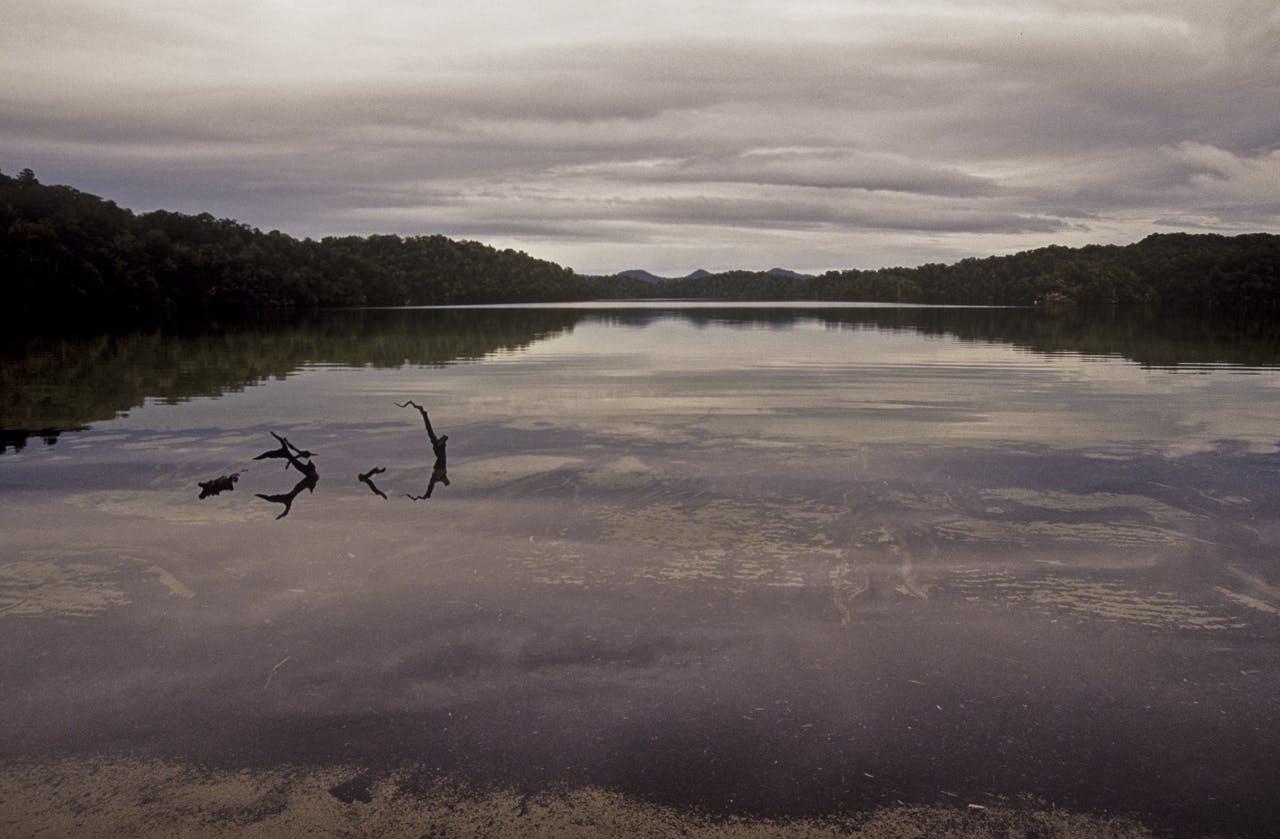 Dawn at Sandy Bay Hut, overlooking Lake Waikareiti. Photo: Shaun Barnett