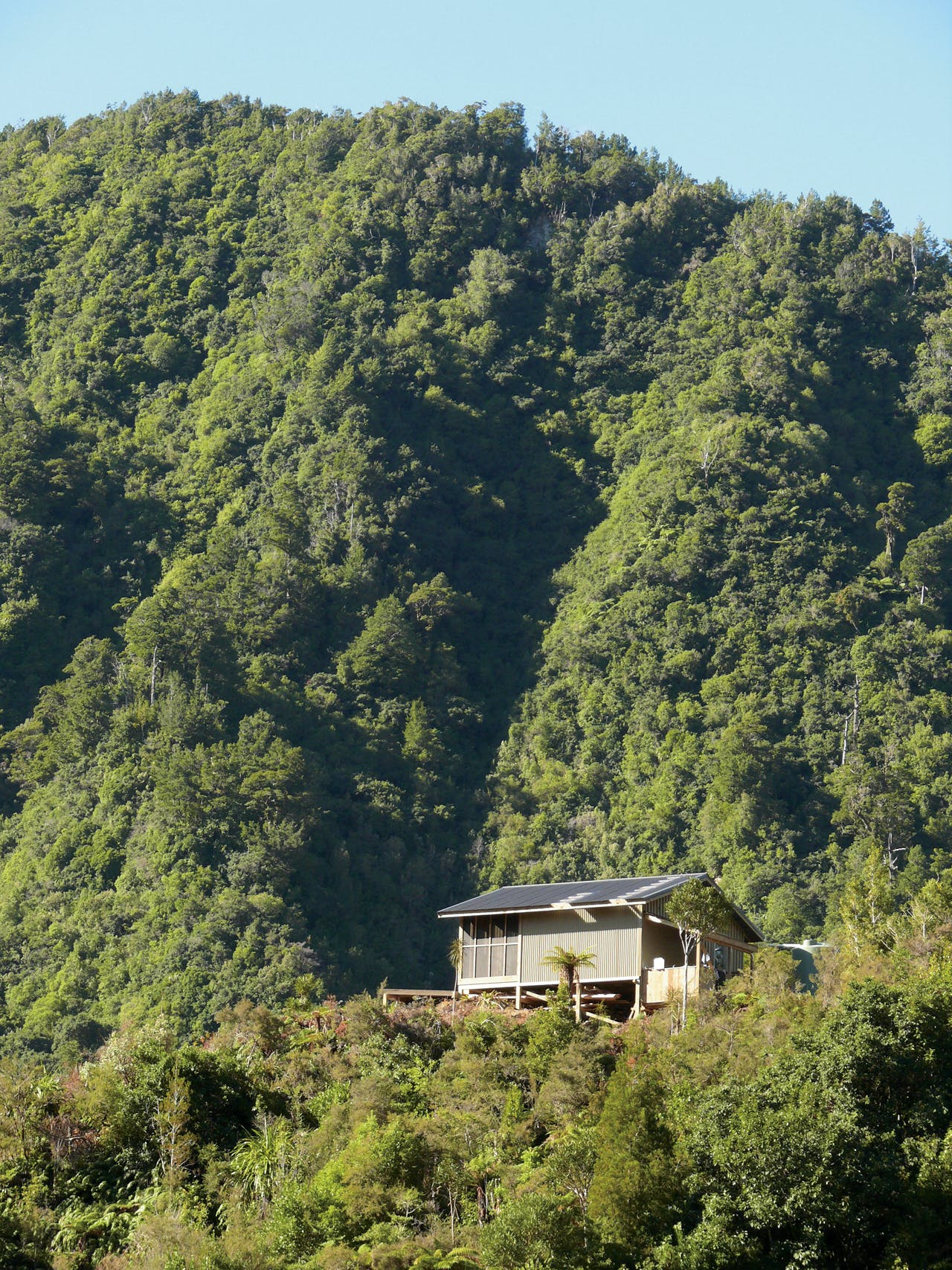 Specimen Creek Hut