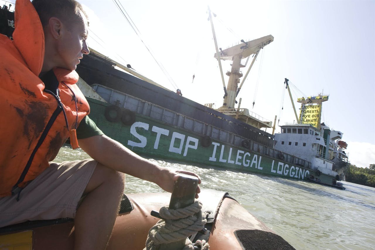 Greenpeace activists paint 'Stop Illegal Logging' onto the side of a logging barge and also prevent its cargo from being  loaded onto the 'Harbour Gemini' cargo ship, in Paia port. These forests are being felled by Turama Forest Industries - a group company of Malaysian logging giant Rimbunan Hijau. In 1995, the Papua New Guinea government granted 1.7 million hectares as a logging extension to Turama Forest Industries  the extension was almost 10 times bigger than the original concession. The timber permit for this new concession, called Turama Extension is valid for 35 years (until 2030).