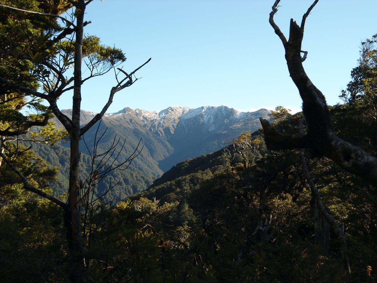 View towards Mt Hector. Photo: Matthew Pike