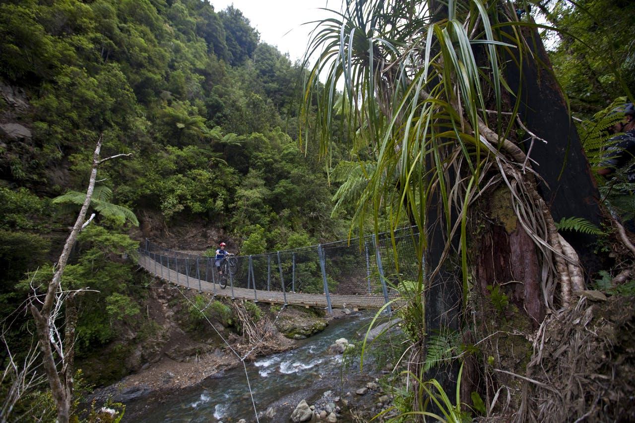 Motu Trails. Photo: Derek Morrison