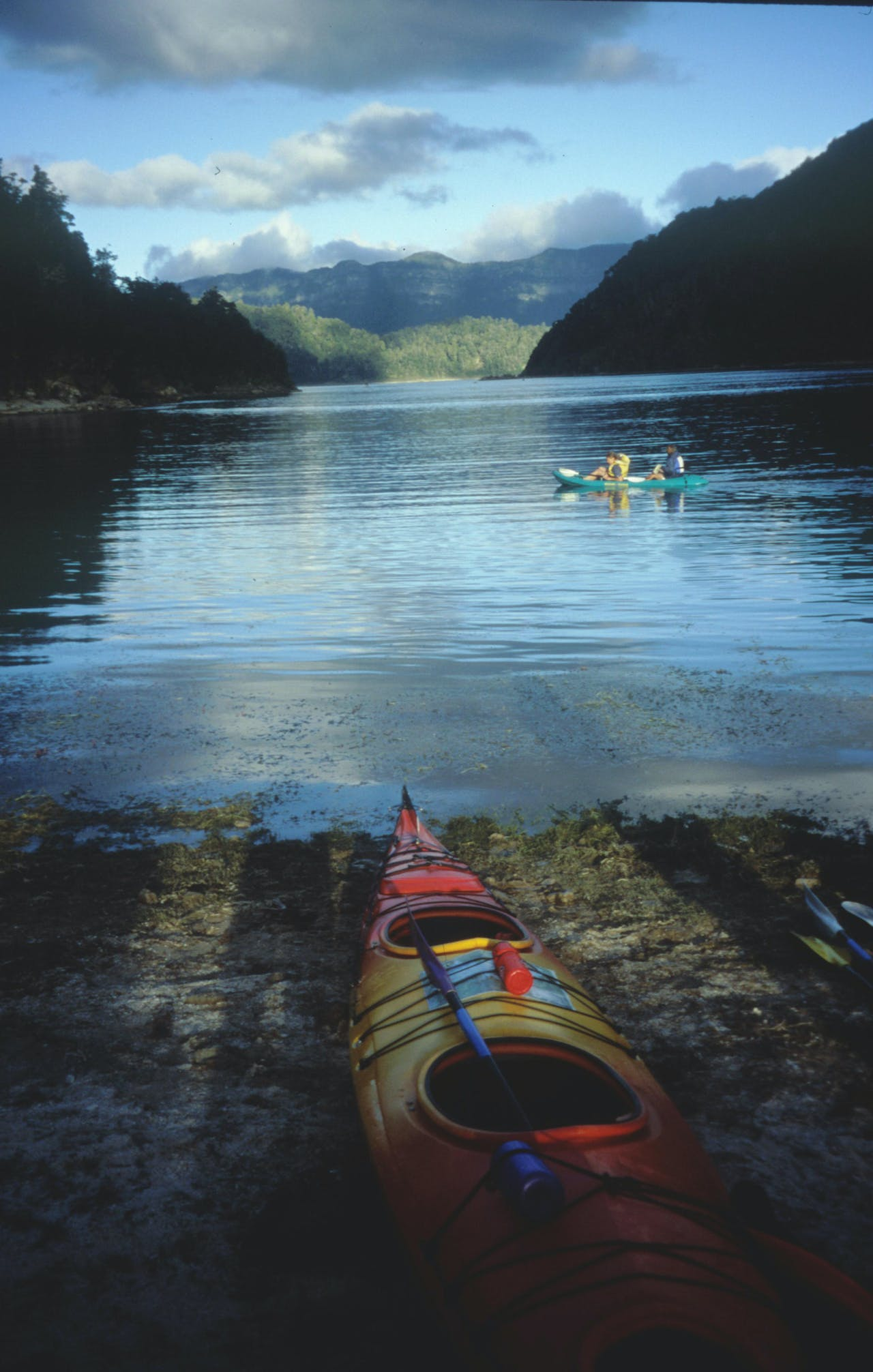 With a multitude of campsites, kayaking Lake Waikaremoana is an alternative way to see the park. Photo: Richard Davies