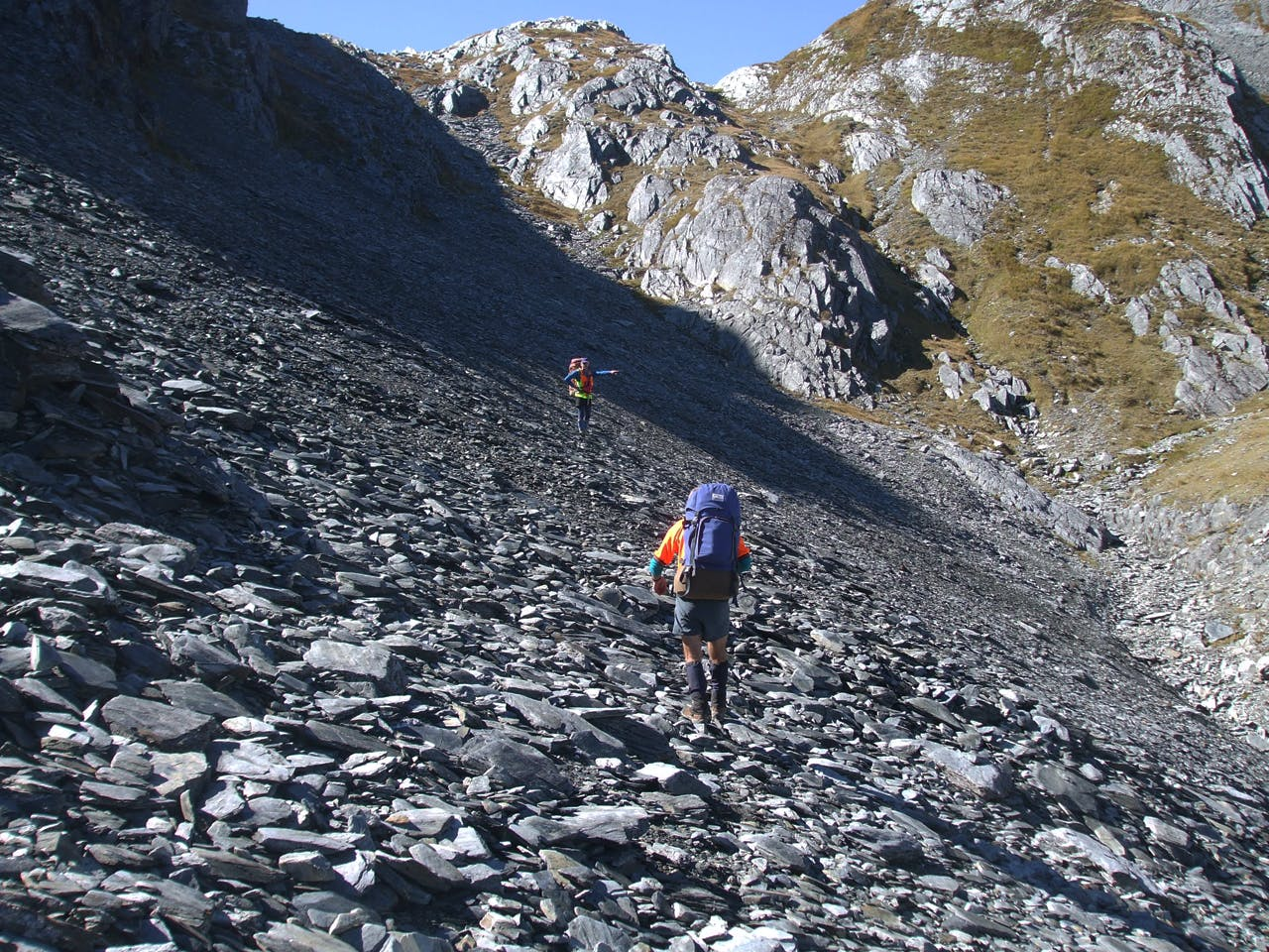 SAR volunteers involved in the search fir Reynolds have continued searching in their own time