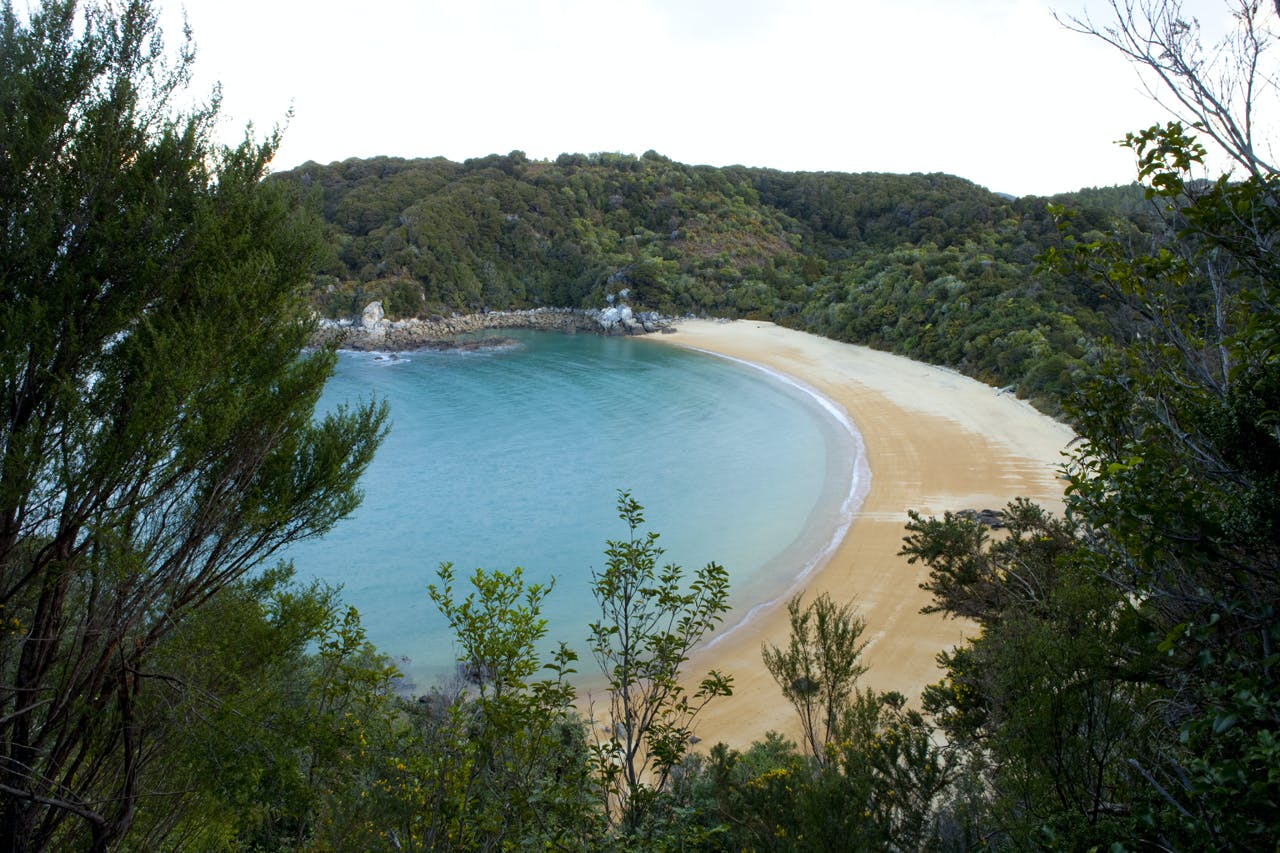 Te Pukatea Bay in the Abel Tasman National Park, Tasman, New Zealand. Photo: www.derekmorrison.co.nz