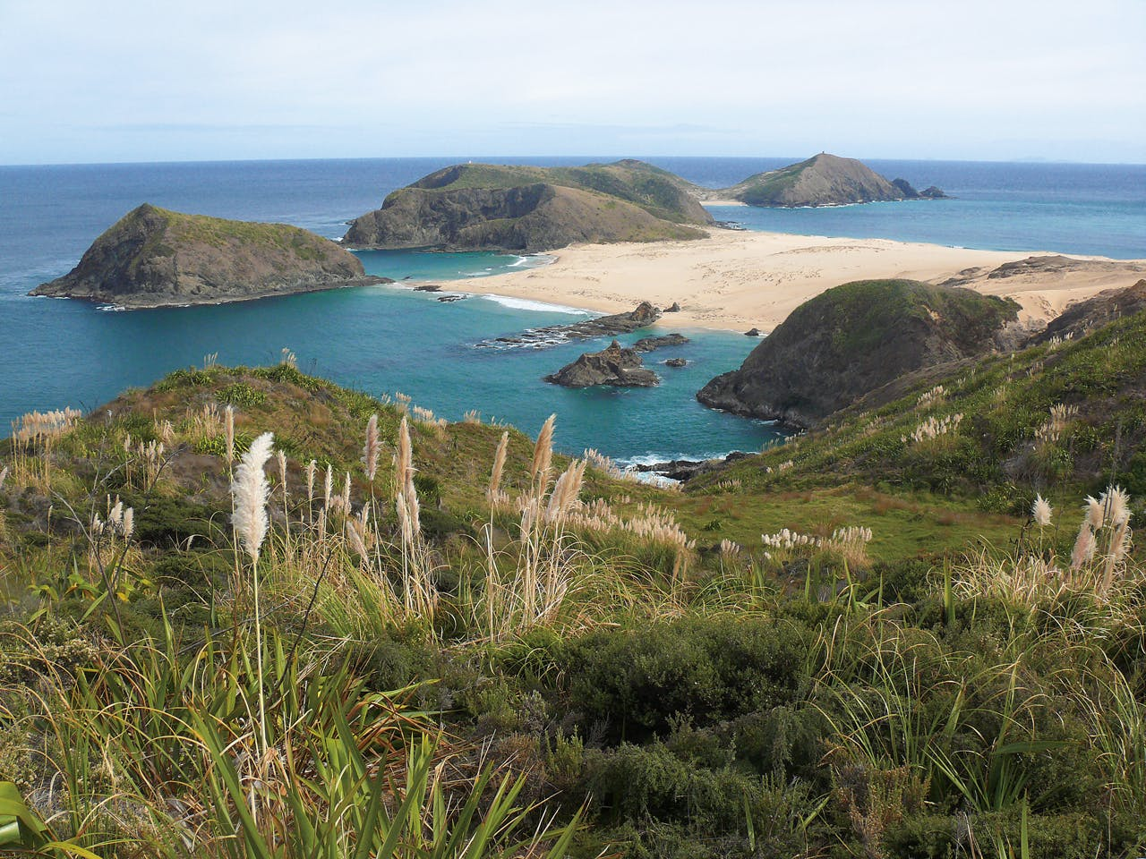 Cape Maria van Diemen with Taupiri Island to the left. Photo: Geoff Spearpoint