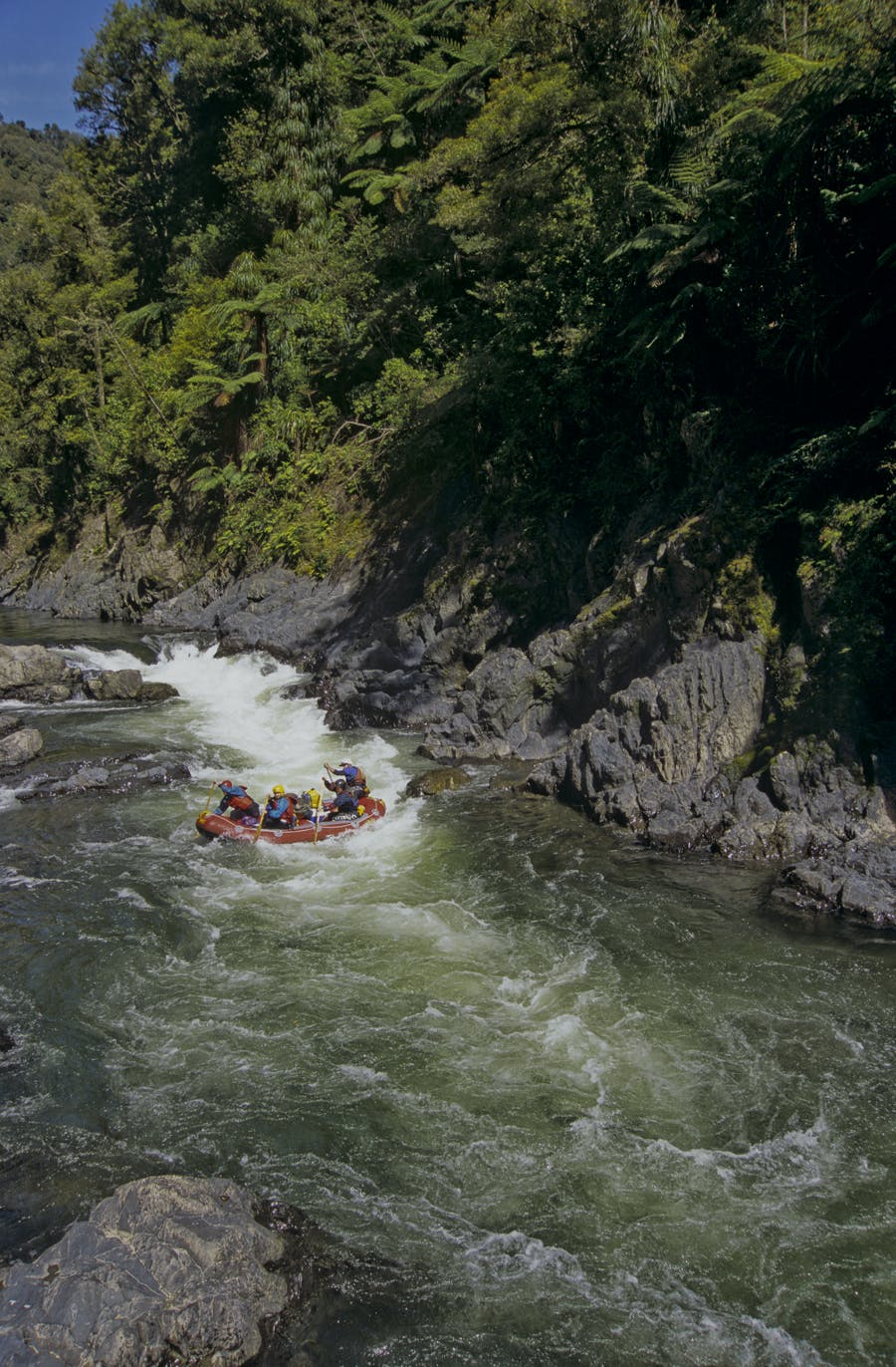 Whitewater action at Bullivants Cascade on the Motu River. Photo: Shaun Barnett