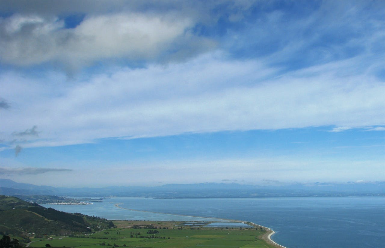 The 3-4hr Cable Bay Walkway starts from the camp ground