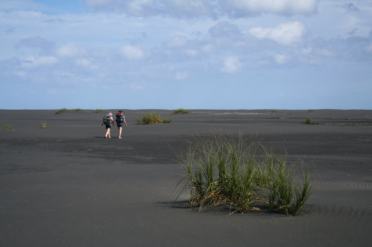 walking barefoot along the striking Whatipu Coast is best done before the black sand heats up. Photo: Josh Gale