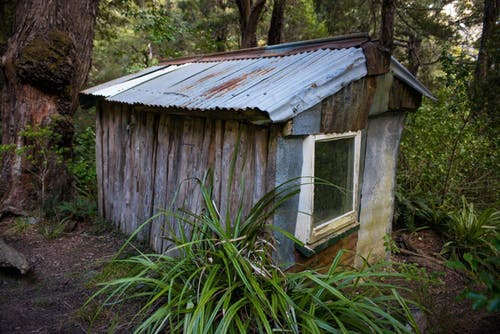 Historic Barratts Hut, located in the headwaters of the Hapuku River. Photo: Pat Barrett