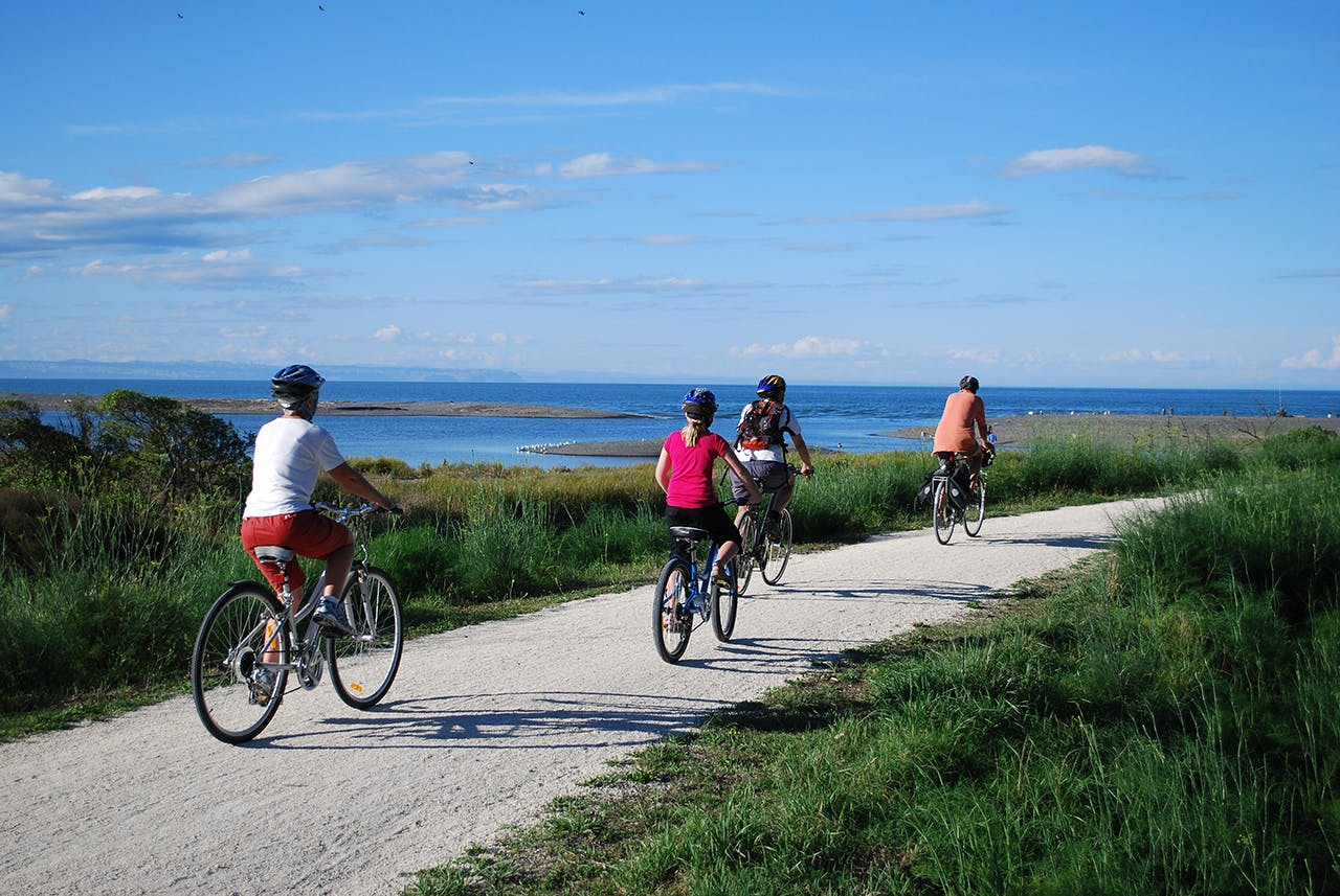Cycling the easy-grade trails in Hawke's Bay. Photo: Jonathan Kennett