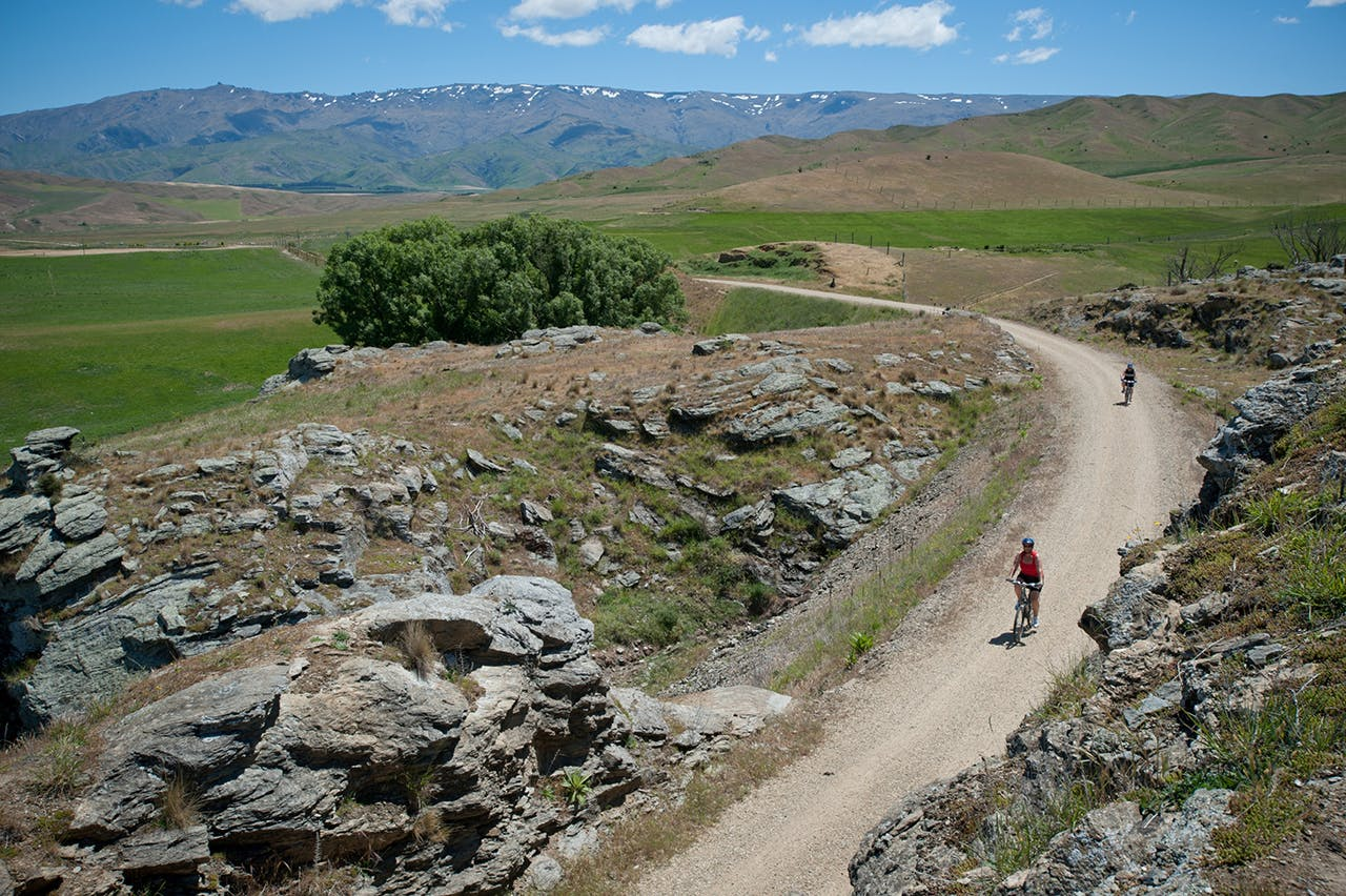 The Otago Central Rail Trail is the flagship cycle trail. Photo: Trail Journeys