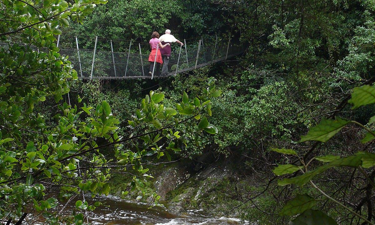 Swingbridge on the track to Wainui Falls. Photo: Geoff Spearpoint