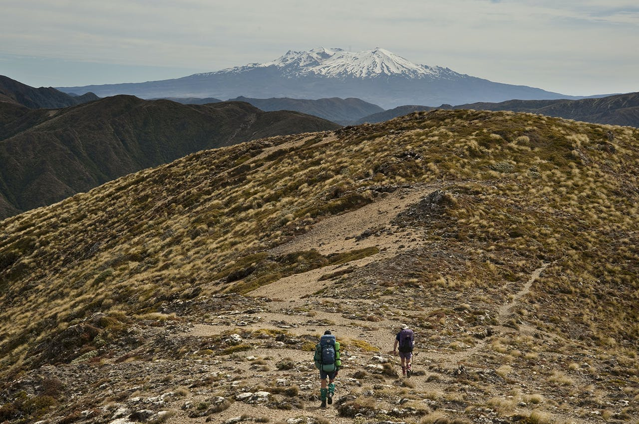 Trampers descend from Junction Top with Ruapehu in the distance. Photo: Shaun Barnett/Black Robin Photography