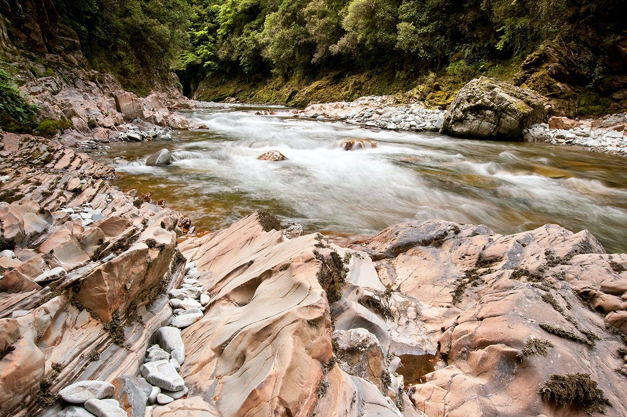 The Wangapeka River is a prime brown trout fishing spot. Photo: Shaun Barnett/Black Robin Photography